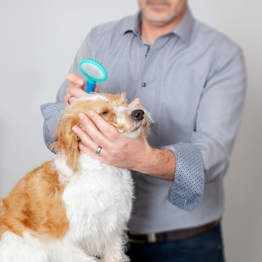 Sweet Dog Grooming